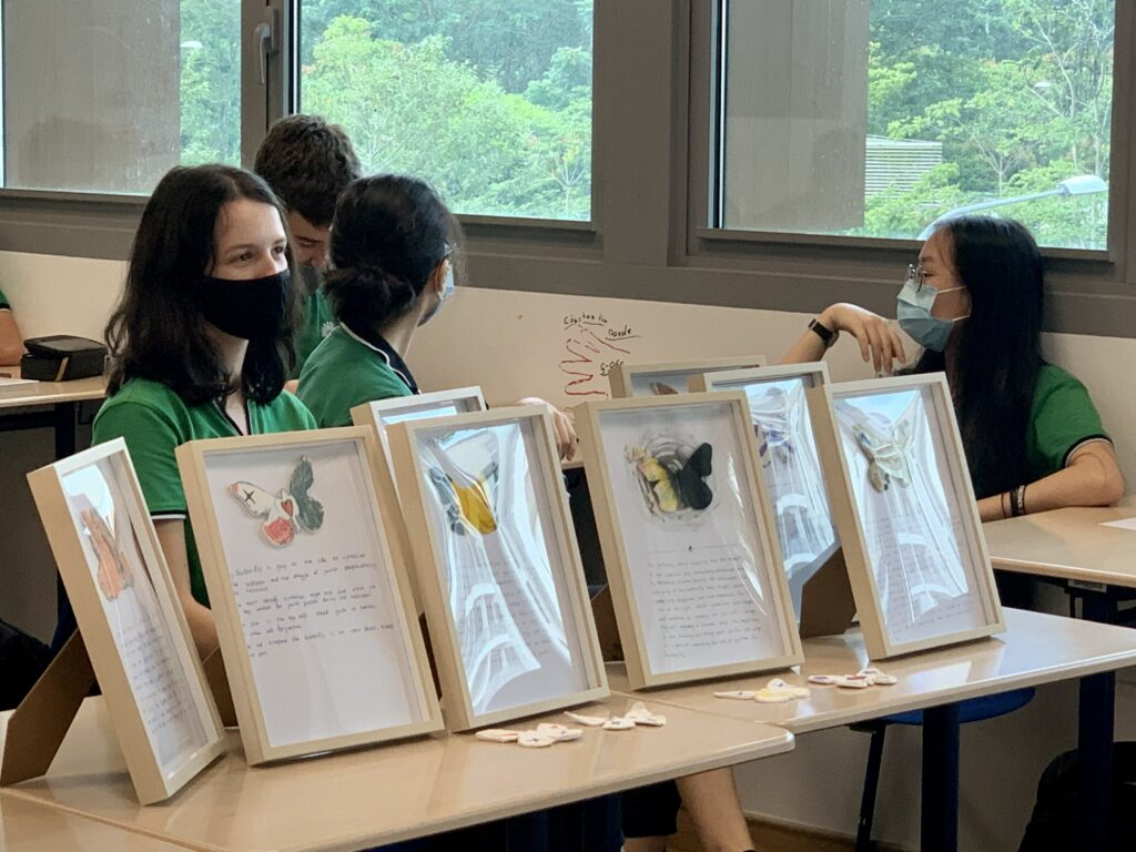 Student behinds butterfly display